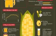 HFCS High Frutos Corn Syrup