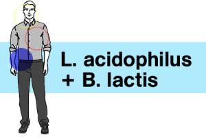 Probiotics-L_Acidophilus